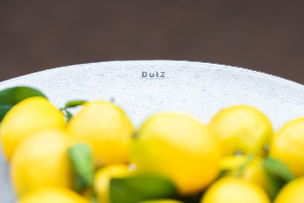 Plate met citroenen in de kleur wit